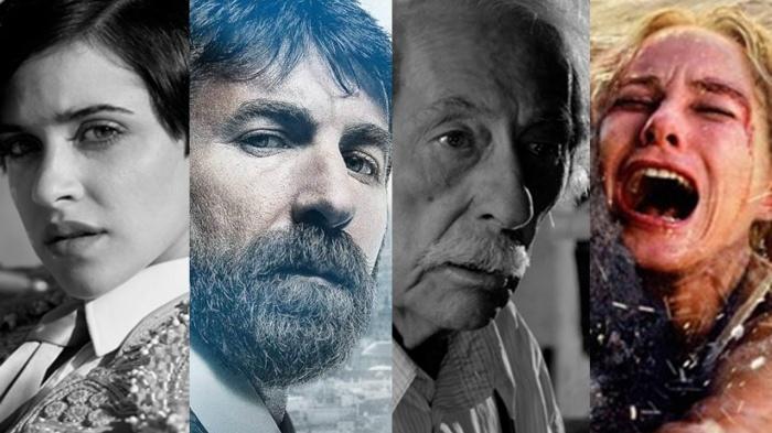 Imagen de los nominados a los premios