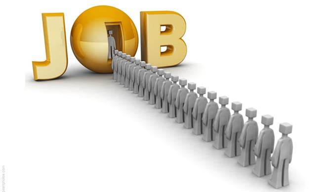 Debemos construir empleo en sectores productivos con futuro en nuestro país.
